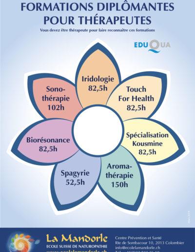 Formations-diplomantes-pour-les-thérapeutes